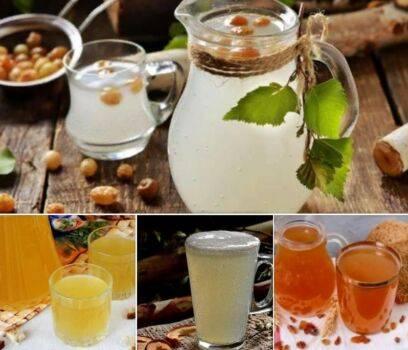 Рецепт приготовления вкусного кваса из березового сока