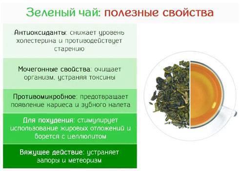 Зелёный чай матча (маття)