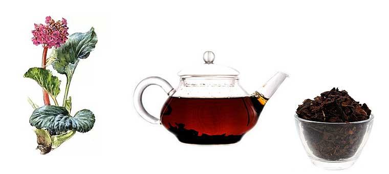 Польза и вред чая из листьев бадана, рецепты