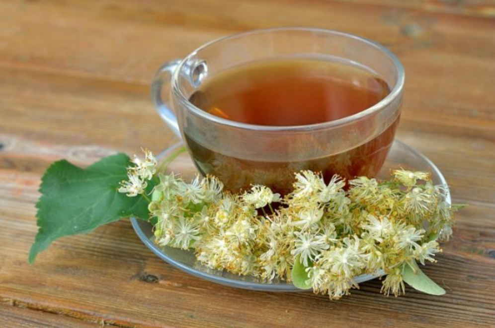 Чем полезен липовый чай, польза и вред напитка