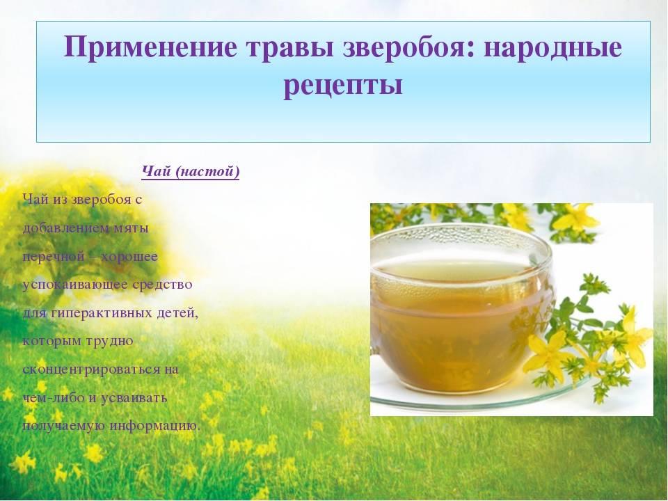 Полезные свойства липового чая