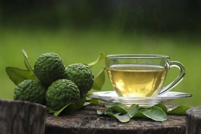 Чай с бергамотом: полезные свойства и возможный вред   польза и вред