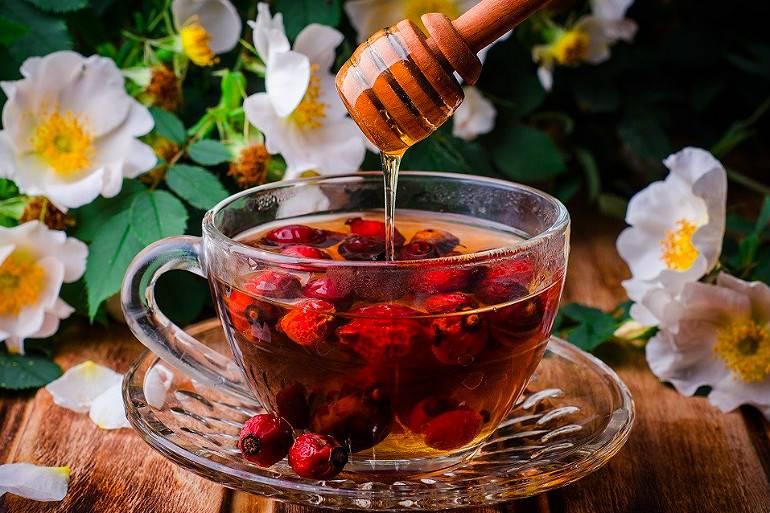 Чай из шиповника: как правильно заваривать и пить (рецепты)