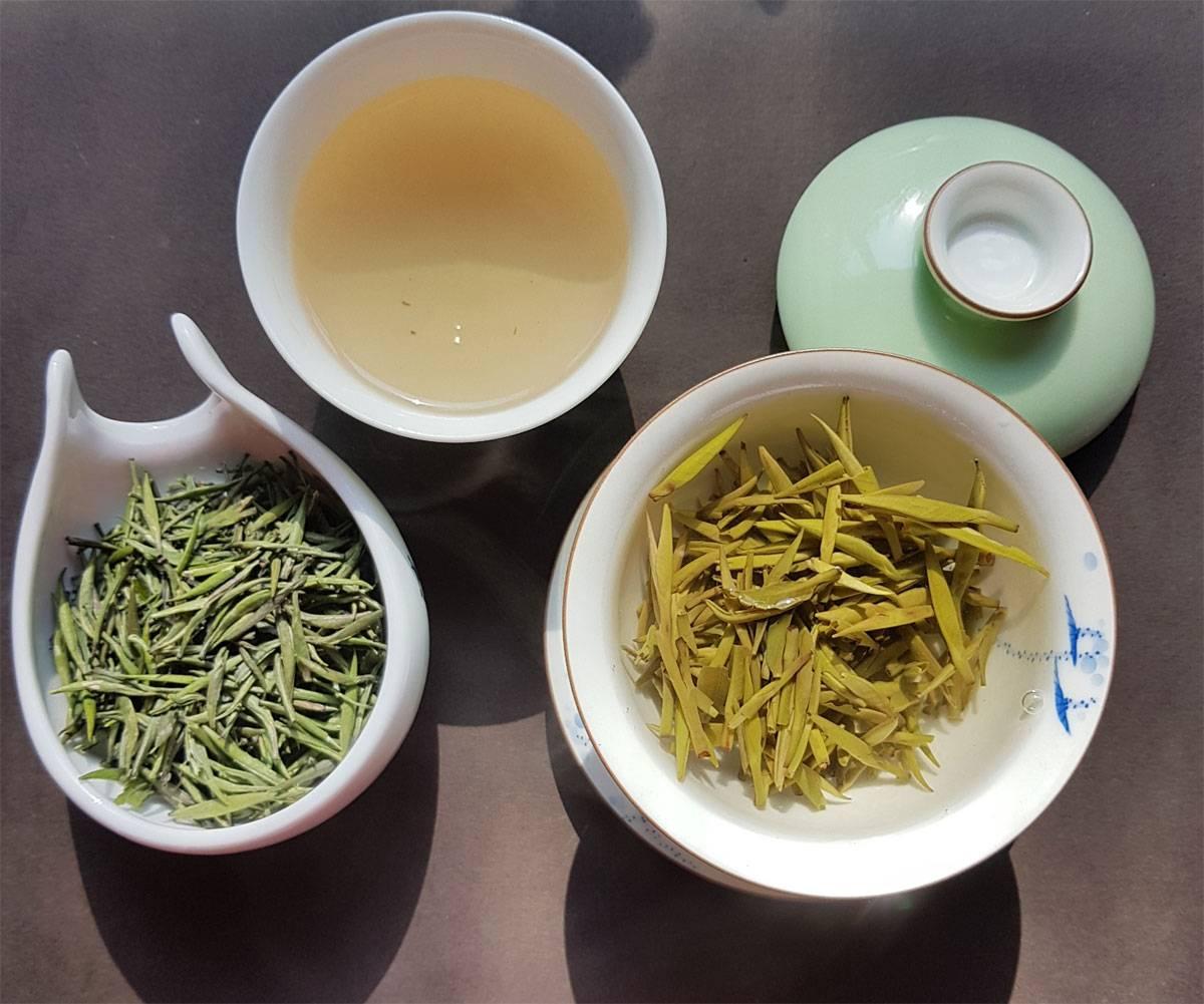 Зеленый чай: польза, вред и калорийность | food and health