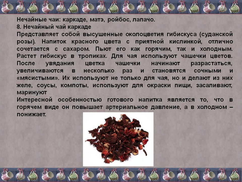 Чай каркаде - польза и вред, в какое время пить