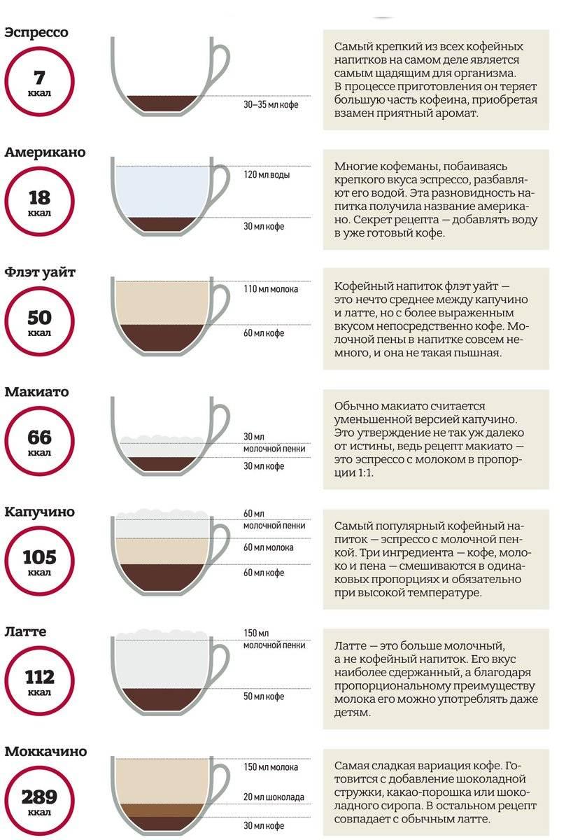 Что такое кофе мокачино, чем отличается от капучино и рецепты приготовления в домашних условиях