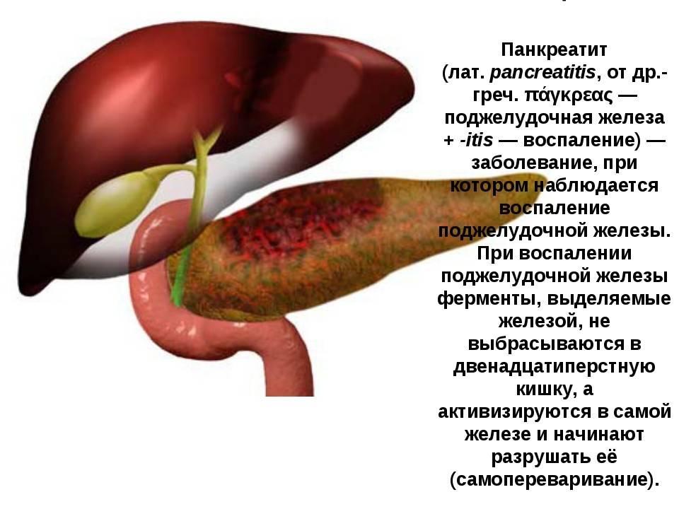 Кофе при панкреатите: можно или нет?   rvdku.ru