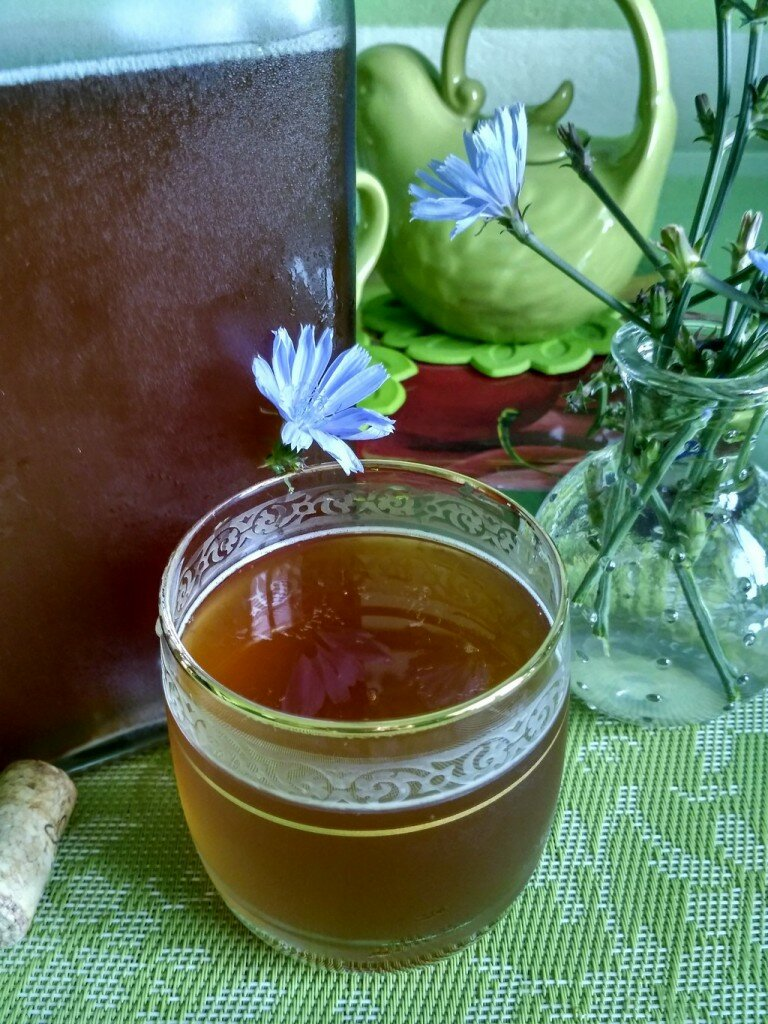 Квас из цикория в домашних условиях: рецепт на 5 литров