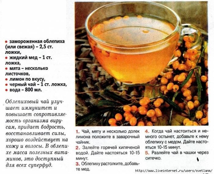Чай с облепихой: лечебные свойства и противопоказания. польза и вред облепихового чая из ягод и листьев