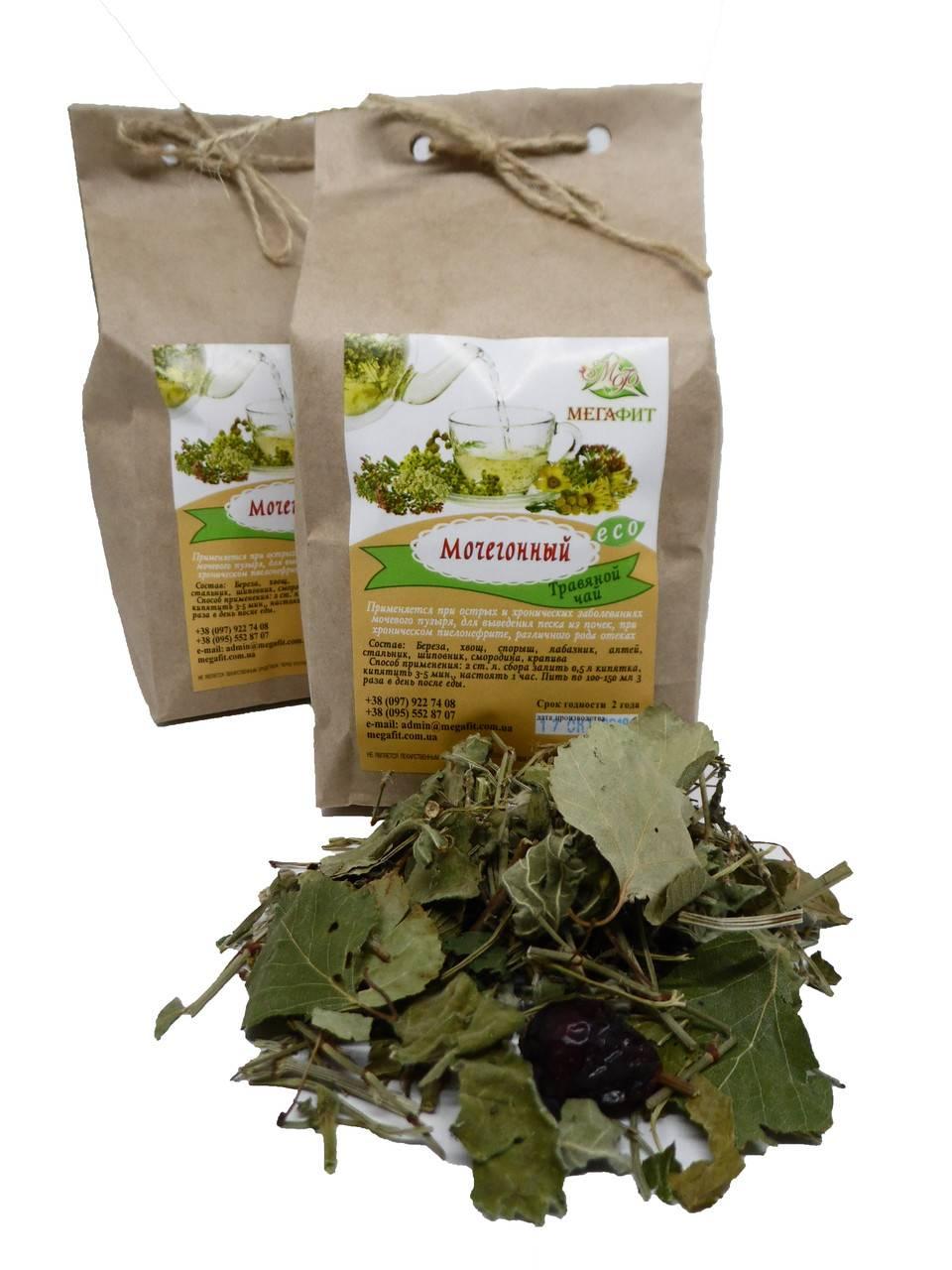Чай зеленый - мочегонный или нет
