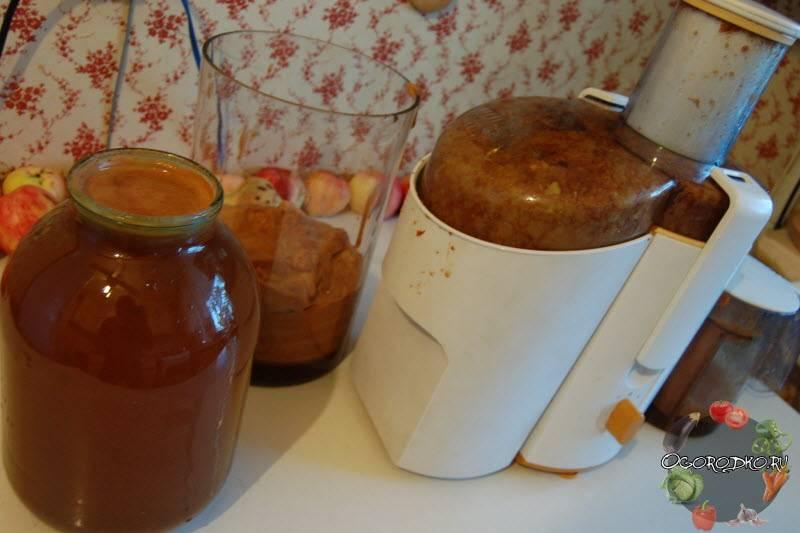 Как сделать яблочный сок без соковыжималки – 4 простых способа