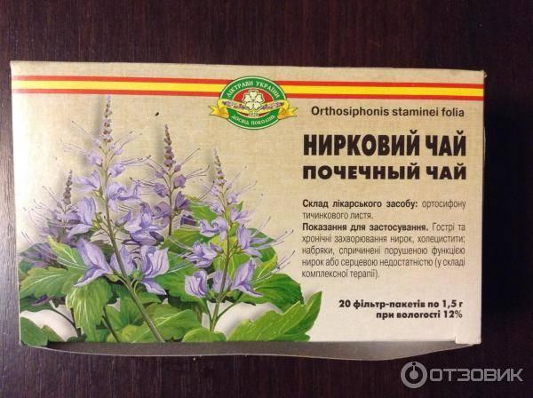 Лекарства для почек на травах: названия растительных таблеток и капель