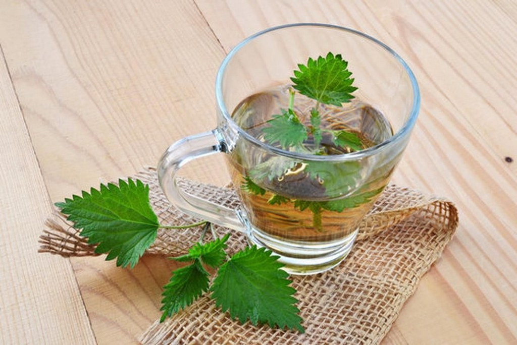 Чай из листьев инжира - полезные свойства и вред