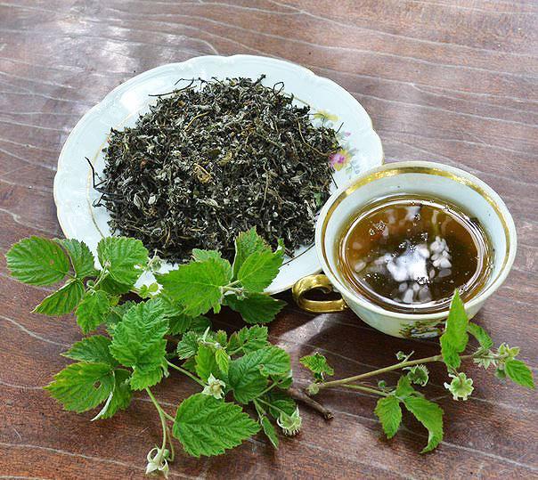 Чай из листьев смородины и малины: польза и вред