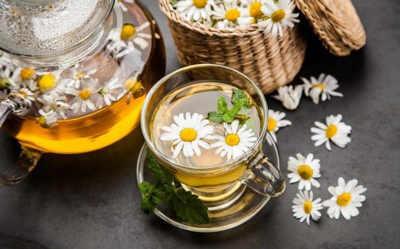 Сборы и травы для крепкого сна или лечения бессонницы | рецепты