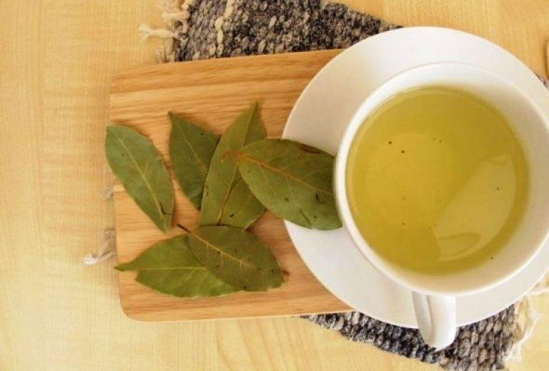 Лечение плодами и листьями инжира — народные рецепты