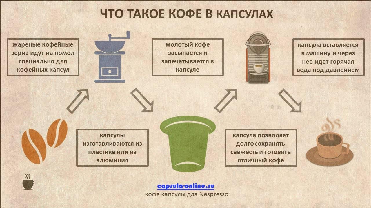 Кофеварка капсульная: что это такое и как работает устройство, популярные модели