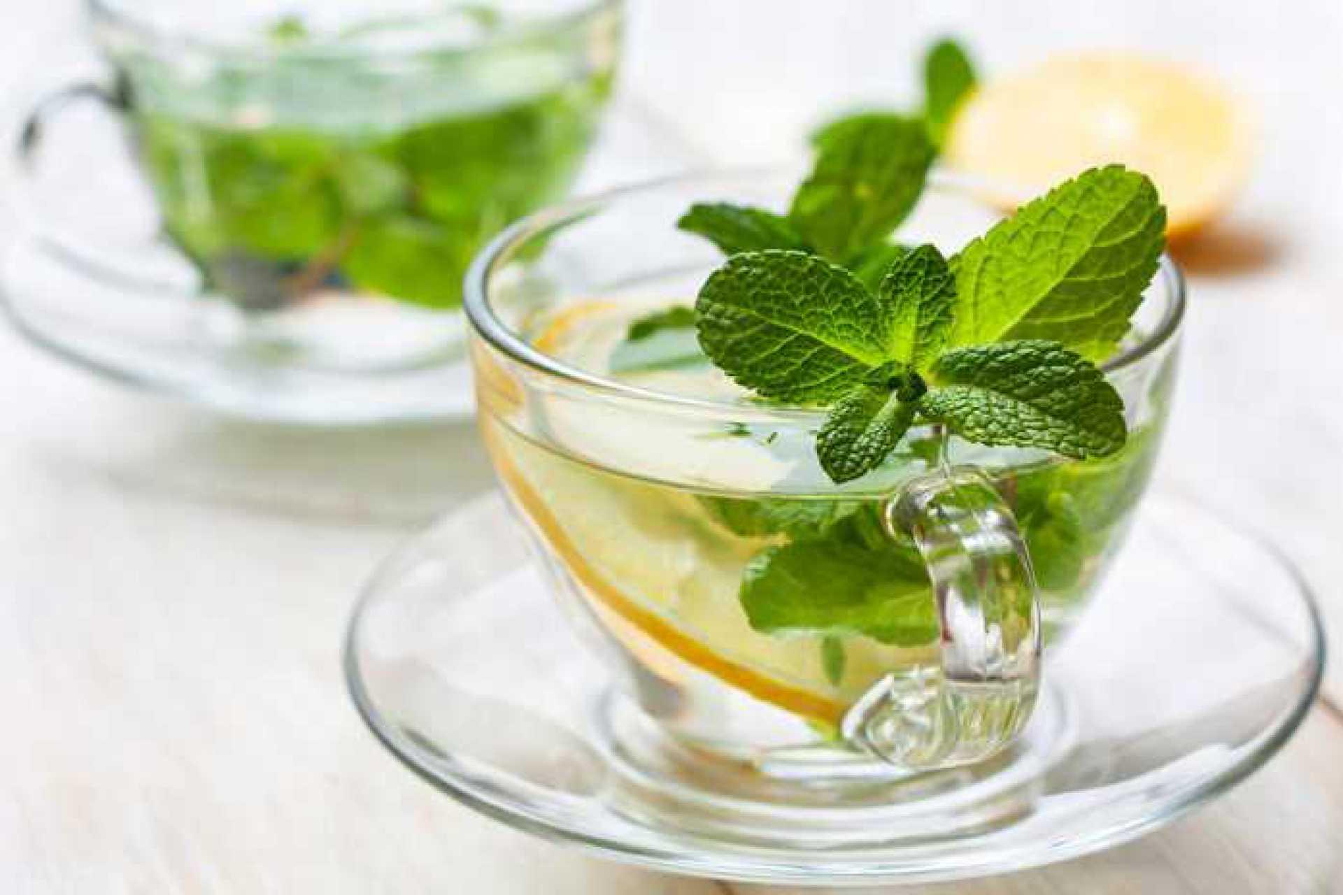 Чай с мятой — польза и вред для мужчин и женщин