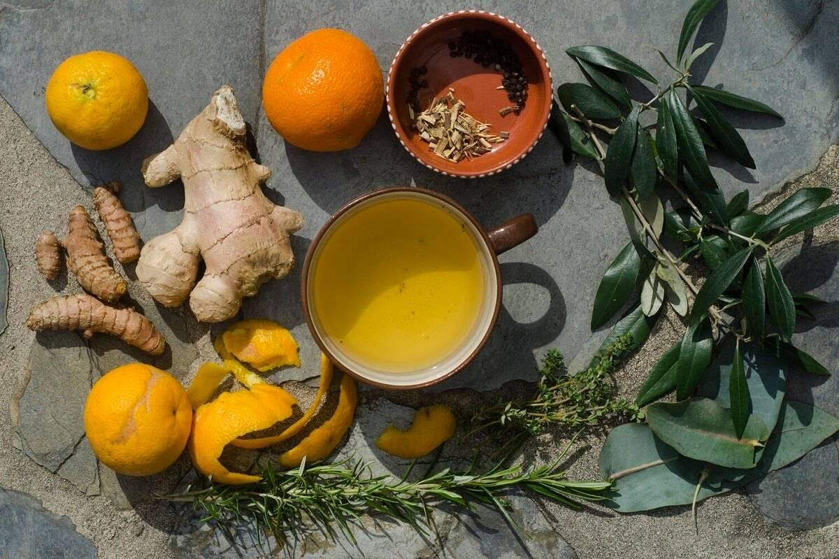 Эвкалипт: лечебные свойства ивред, рецепты иособенности применения