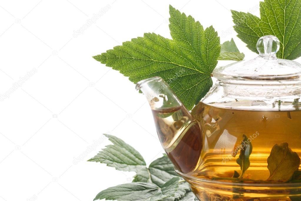 5 рецептов полезного чая из листьев смородины