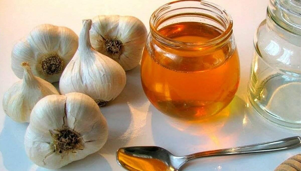 Настой чеснока на воде - рецепты и применение
