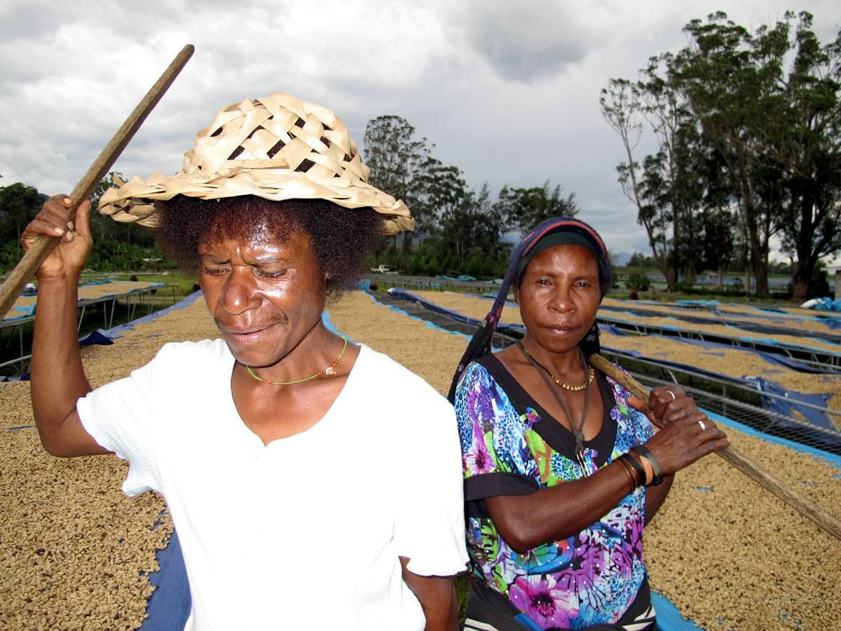 Производство кофе в папуа-новой гвинее