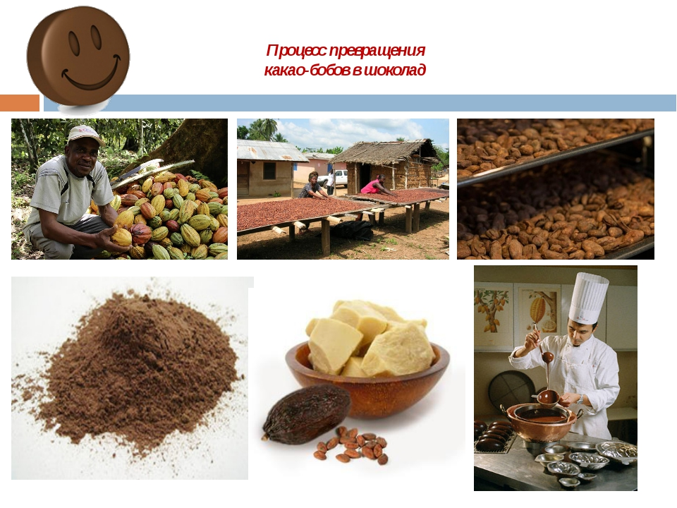 Алкализованный какао-порошок