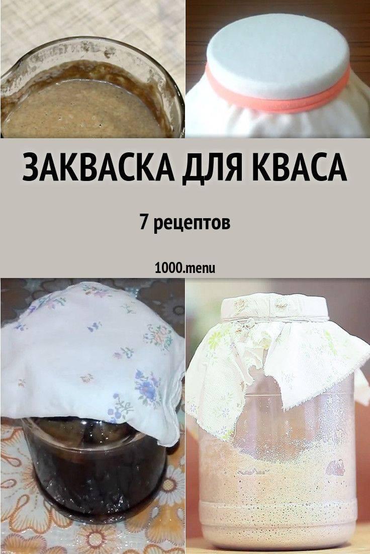 Закваска для кваса: как сделать в домашних условиях, рецепты приготовления