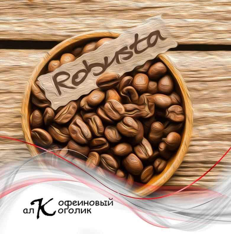 Кофе робуста — что это? описание сорта, виды и вкус кофе robusta