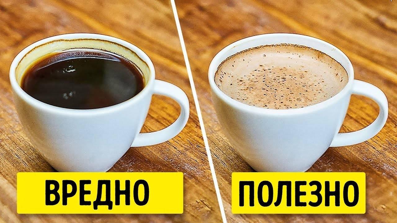 Кофе при геморрое можно ли пить, состав, действия на организм, особенности питания