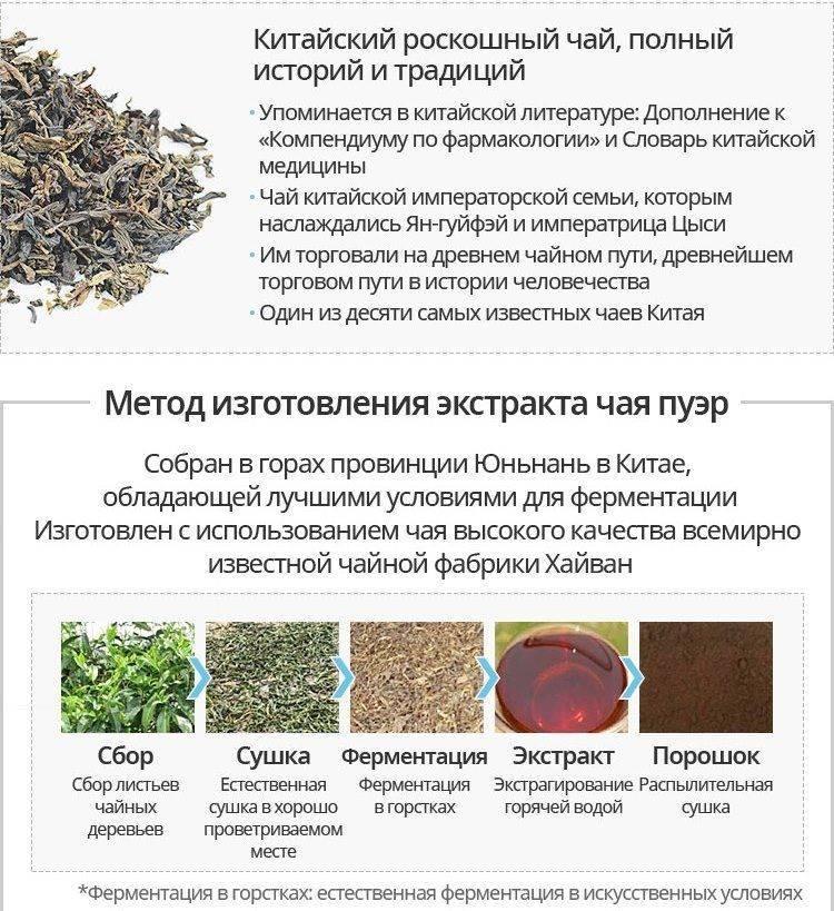 Польза и вред чая пуэр. его свойства, эффект на организм и отзывы читателей