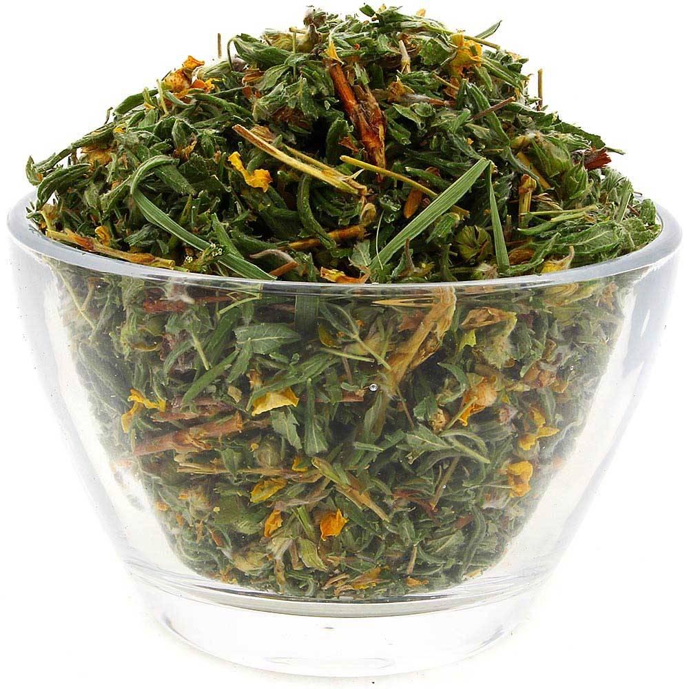 Когда собирать курильский чай: полезные свойства и противопоказания лапчатки
