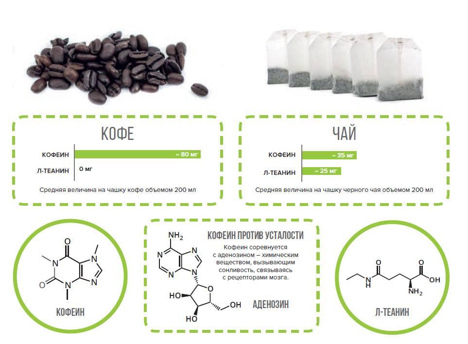 Что лучше пить кофе или энергетик? | в чем разница