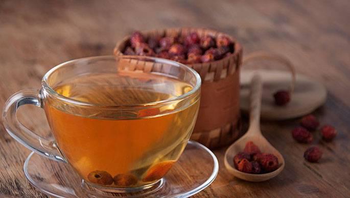 Чай изшиповника— польза ивред. как приготовить чай изшиповника?