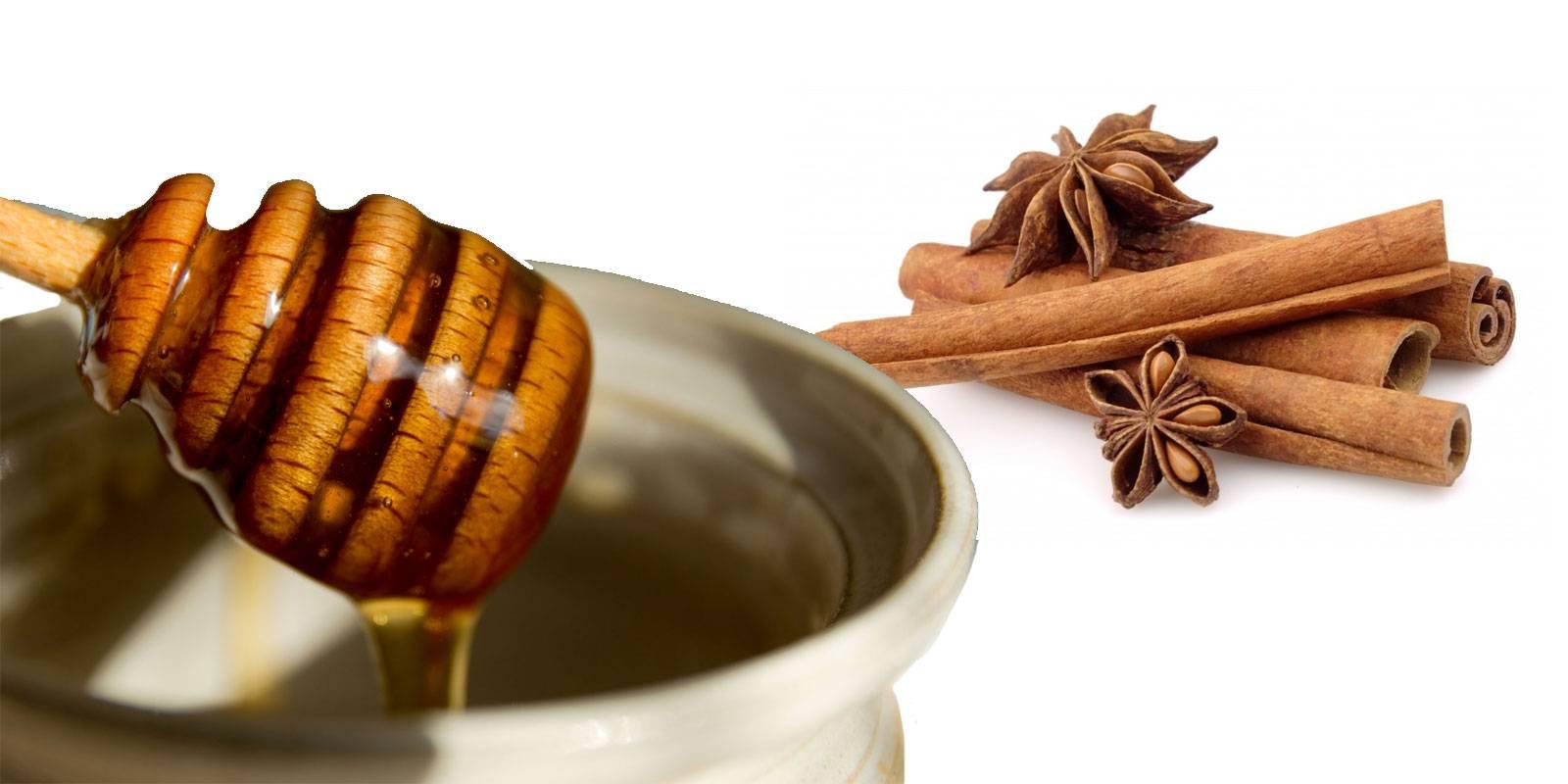Как кофе с медом помогает похудеть? и еще 3 полезных свойства необычного напитка