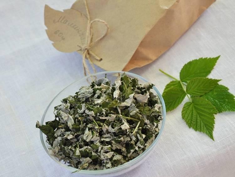 Малиновый чай: рецепты и применение в народной медицине