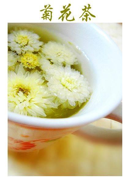 Чай из хризантемы: польза и вред