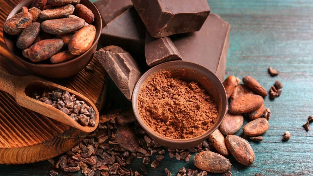 Какао (порошок) — польза и вред для здоровья, какой выбрать ☕