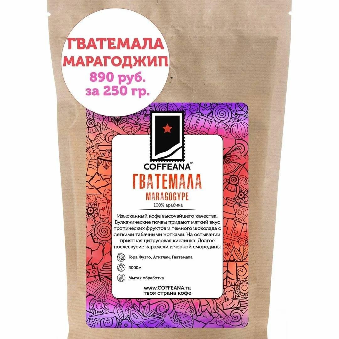 Кофе марагоджип: особенности и территория выращивания