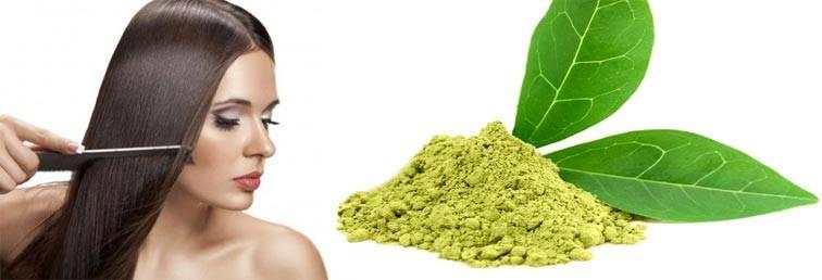 Зеленый чай для кожи лица и тела, волос: польза, рецепты