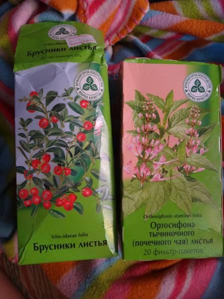 Брусничный чай: как заваривать, польза и вред, рецепты чая из брусники