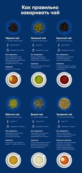 Как правильно и вкусно заваривать чай – делимся секретами