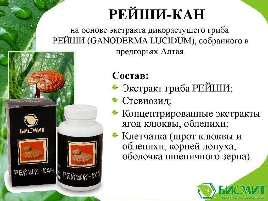 Гриб рейши — лечебные свойства. применение настойки, экстракта или чая гриба рейши для лечения болезней