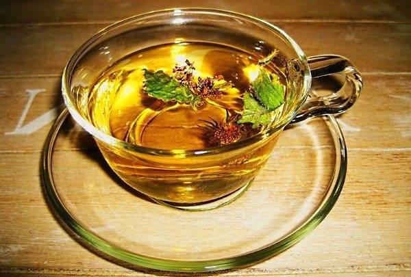 Чай из бадана, польза и вред