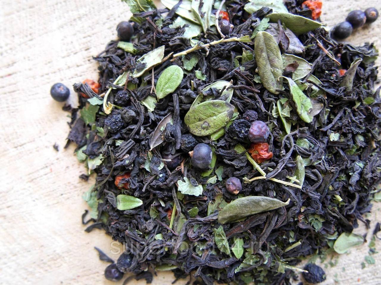 Курильский чай лечебные свойства и противопоказания, фото