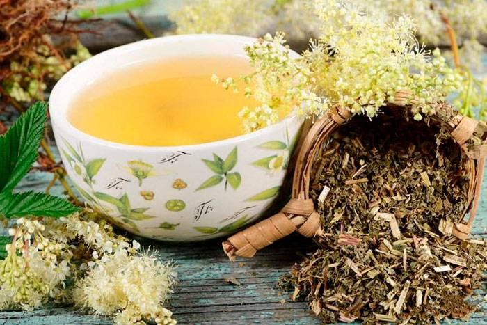 Чай с таволгой:польза,кому нельзя,рецепты,правила приготовления
