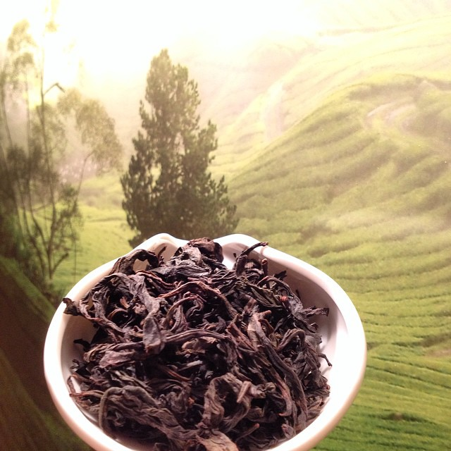 Шуй сянь чай – эффект китайского улуна и его дегустация