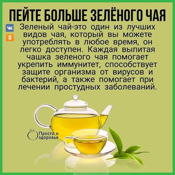 Что будет с организмом, если пить зеленый чай каждый день : новости, здоровье, чай, советы, красота и здоровье