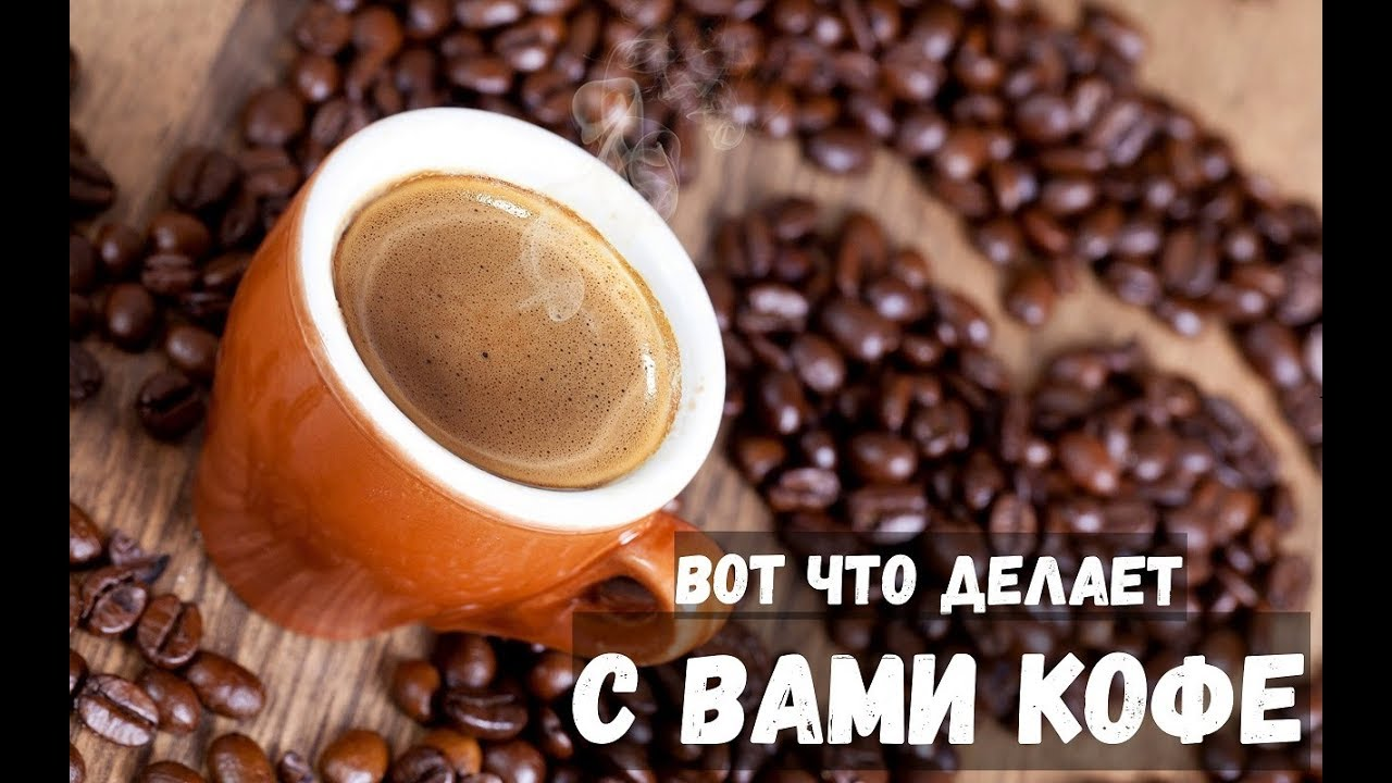 Мифы о кофе: 10 самых популярных заблуждений о любимом напитке   factinteres