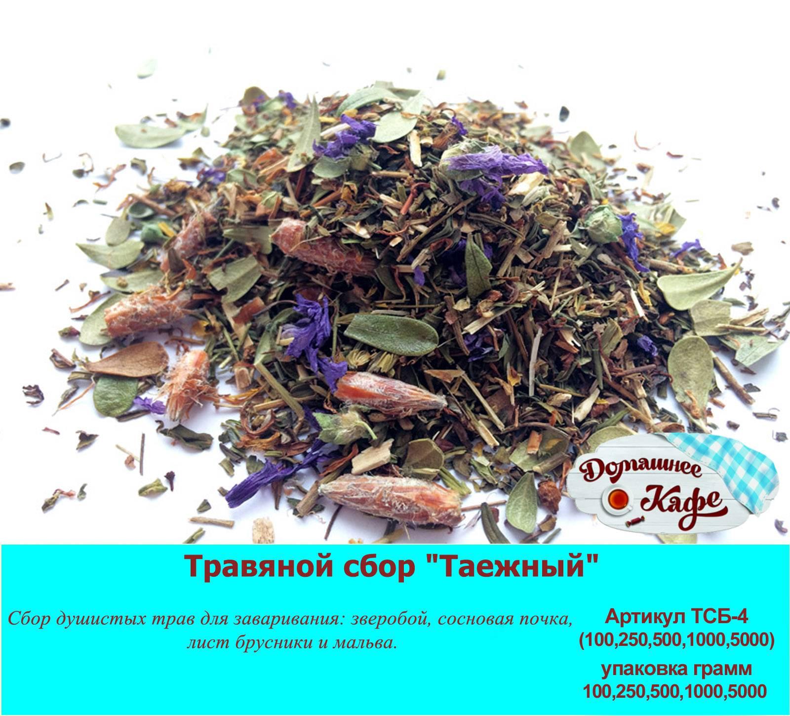Чай лемонграсс — полезные свойства, рецепты заваривания лимонной травы